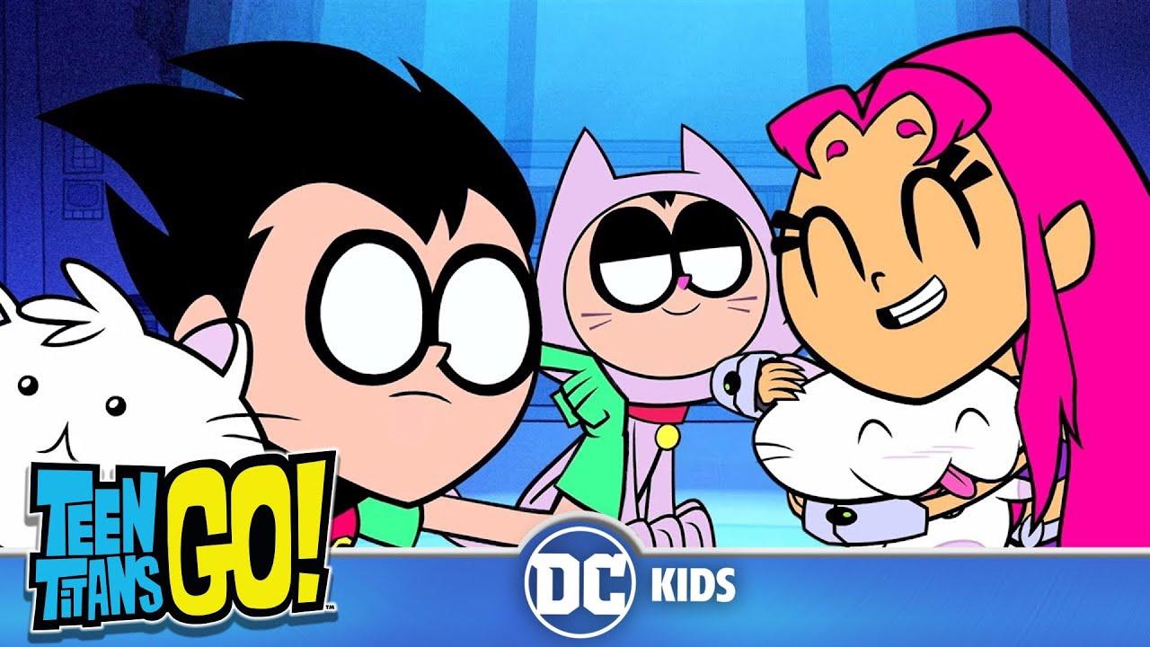 Teen Titans Go! En Latino | Más gatos 😻 gatos 😽 gatos 😼 | DC Kids