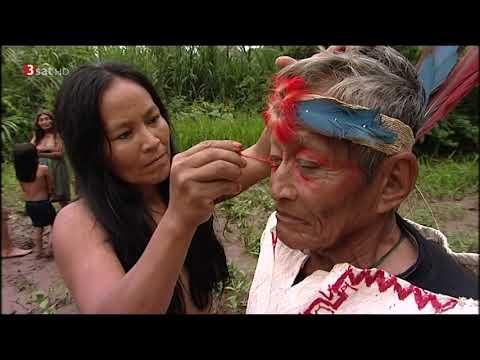 Doku Abenteuer Amazonien - Reise durch den Regenwald