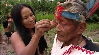 [Doku] Abenteuer Amazonien - Reise durch den Regenwald