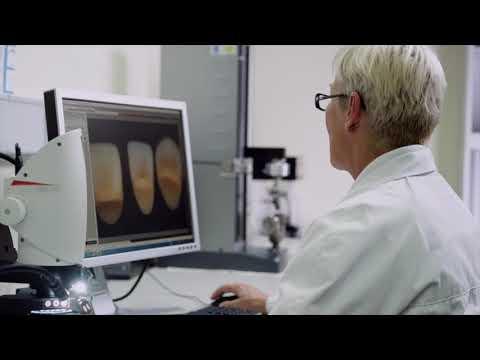 Kulzer Tooth Manufacturing