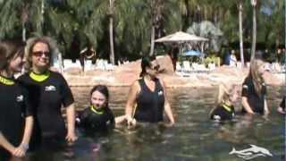 Discovery Cove Part 2