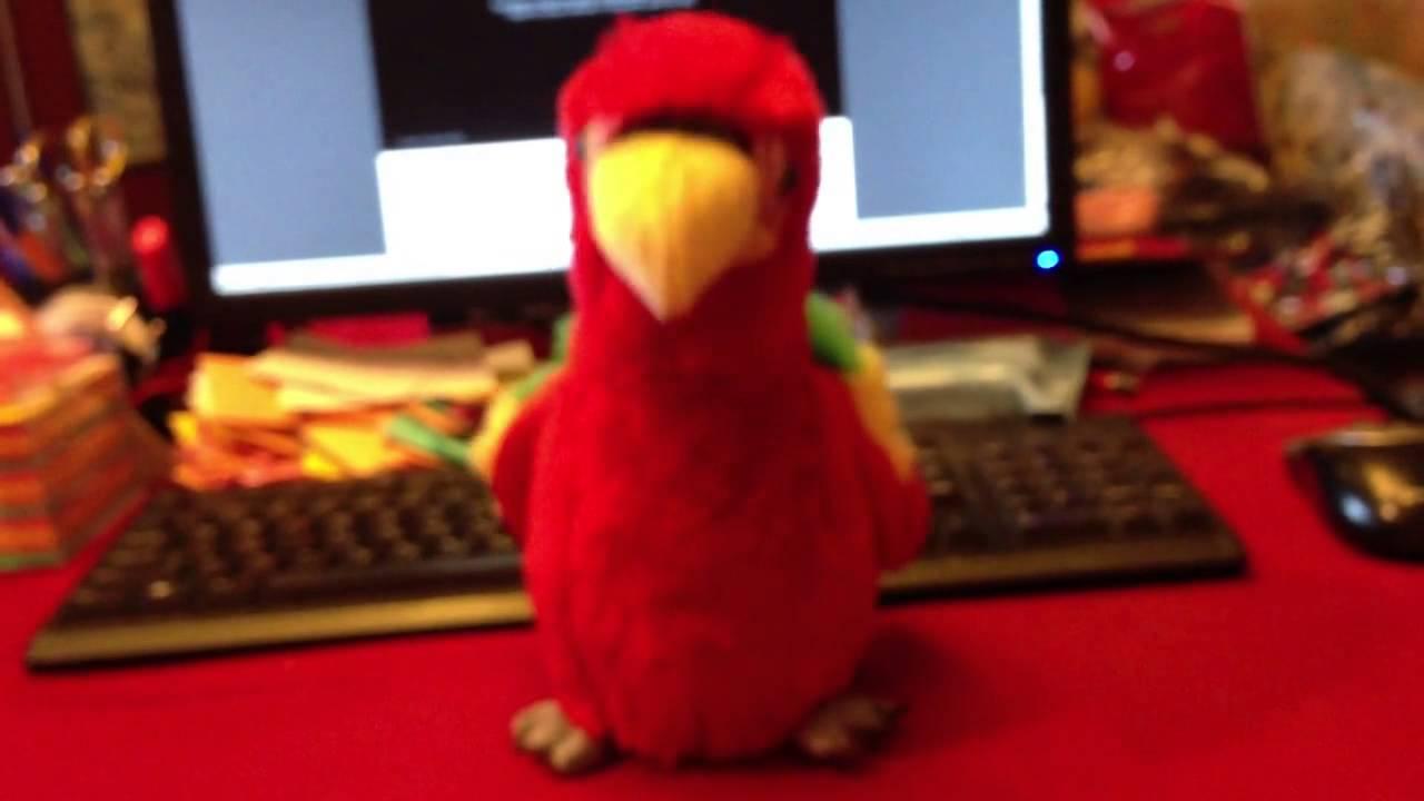 Игрушка Поющий попугай - YouTube