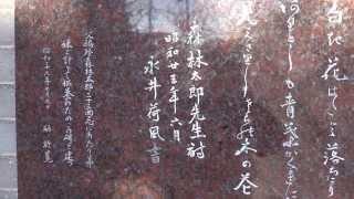 説明 東京 千駄木 団子坂上 台東区立森鴎外記念館.