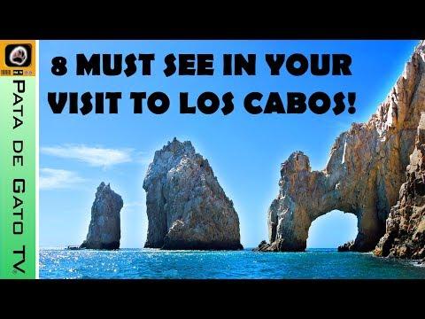 8 imperdibles en Los Cabos, Baja California Sur / 8 must in Los Cabos, Baja.
