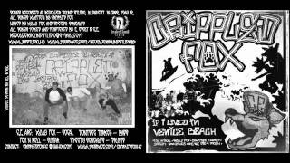 Crippled Fox- cxfx Is Fit For Mosh!