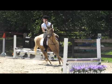 Caspian and Jenny Herrera, Finally Farm Hopeful Jumpers 2' - Jump off