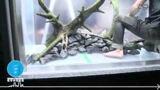 [ADAview] 東京スカイツリータウン・すみだ水族館 新規レイアウト制作 パート2 thumbnail