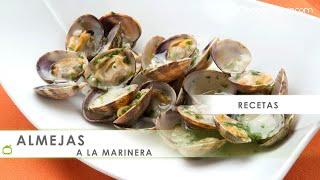 Receta de almejas a la marinera – Karlos Arguiñano