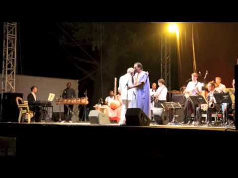 Mike Hertings GlobalMusicOrchestra feat BuJazzO  La Rose du Sable