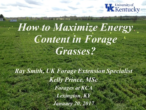 How to Maximize Energy Content in Forage Grasses-Ray Smith