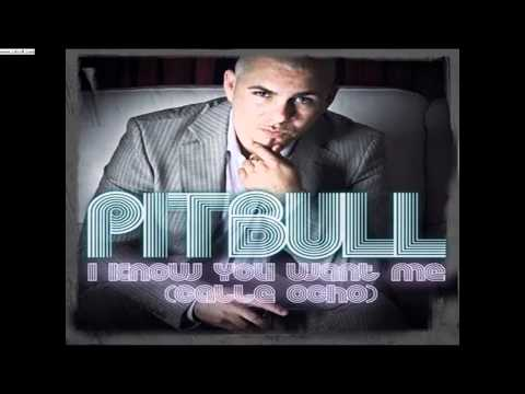 Pitbull  I Know You Want Me  One Two Three Four Uno Dos Tres Cuatroavi