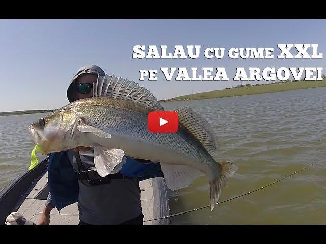 Pescuit la salau cu gume XXL pe Valea Argovei