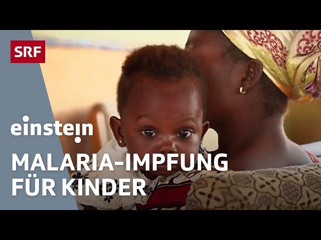 Malaria-Impfstoff für Kinder in Afrika – Leben retten mit Schweizer Hilfe   Medizin   SRF Einstein