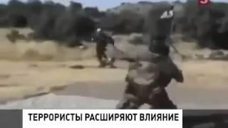Казни ИГИЛ  Мировые Новости