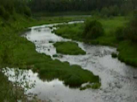 Lynna River, Leningrad Region, Russia (June 2009)