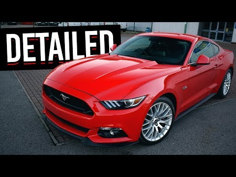 NO MORE SWIRLS! My Mustang Gets Detailed