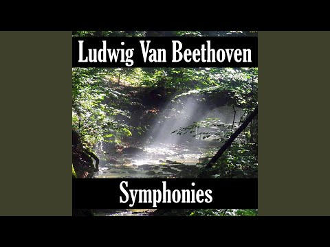 Symphony No- 2 in D Major, Op- 36 II- Larghetto