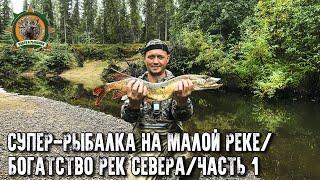Таёжная река кишит щуками!/Рыбалка на спиннинг/Заехали на избу/Часть 1