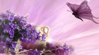 Spiritual butterflies