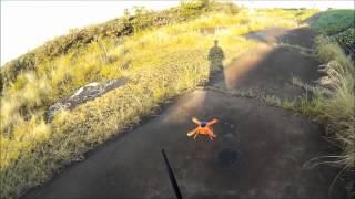 Wingsland Scarlet Minivet 墜落
