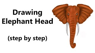 How to Draw an Elephant Head - Step by Step