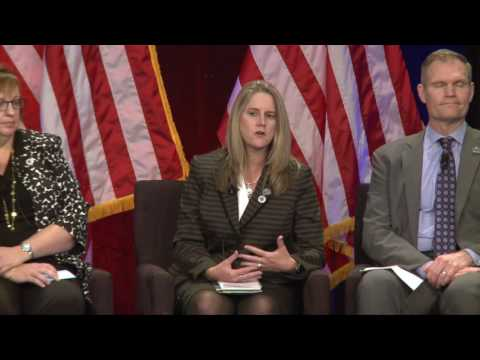 Caregiver InnoVAtion: Department of Veterans Affairs: Program Landscape