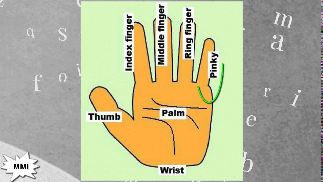 Finger Names: What are Fingers Called? - YouTube