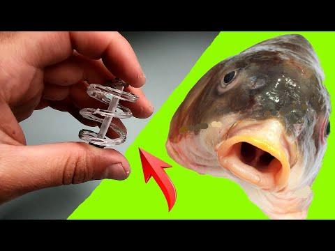 РЫБАКИ В ШОКЕ ! это ГЕНИАЛЬНЫЙ УБИЙЦА карповых рыб 2020 !