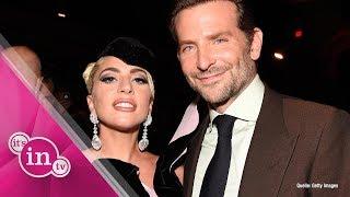 Bradley Cooper setzte für