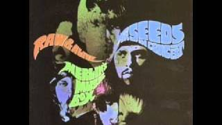 The Seeds - Gypsy plays his Drums