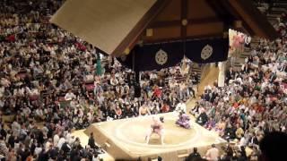 quand le Yokozuna (grand champion) Hakuho perd ... les coussins vol...