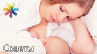 Что употреблять кормящей маме? Вопрос зрительницы для диетолога