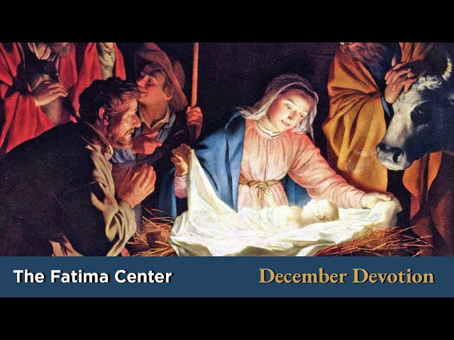 December Devotion: The Divine Infancy | Monthly Devotions with Fr. Shannon Collins
