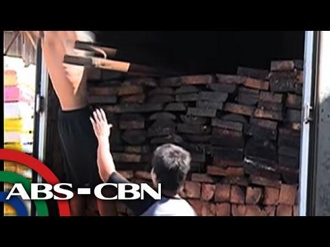 Bandila: Ilang manggagawa, umalma sa moratorium sa pagputol ng puno ng niyog
