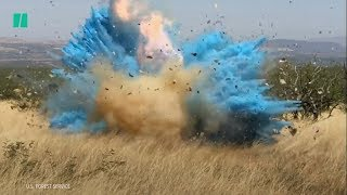 Gender Reveal Sparks Arizona Wildfire