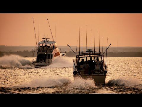 Winning Lake Ontarios BIGGEST Salmon Fishing Tournament ($40, 000)