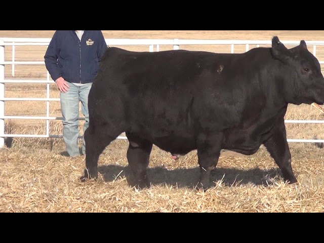 Express Ranches Lot 149