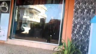 Индия,ГОА глазами туристов(Супер видео о том что есть на СЕВЕРНОМ ГОА., 2015-05-16T09:14:05.000Z)