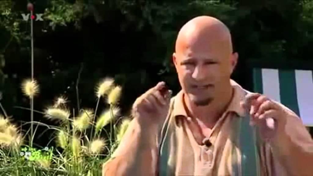Ab Ins Beet Detlef Youtube