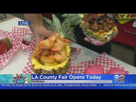 LA County Fair Opens Today