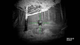 Съёмка от пользователей цифрового прицела X-Sight - глухой лес и кабан!)(Видео снято на умный цифровой прицел ATN X-Sight HD день/ночь 24/7 Видео предоставлено пользователями продукции..., 2016-06-22T10:24:49.000Z)