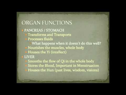 Liver Functions in Chinese Medicine