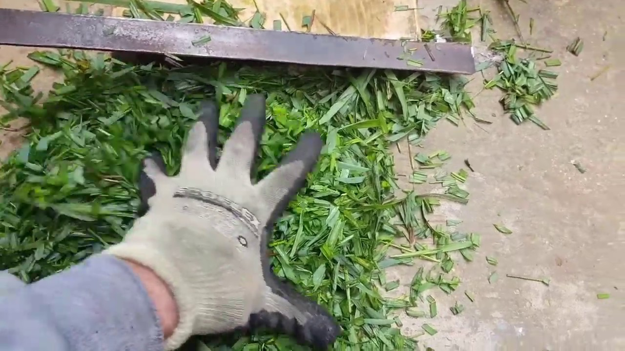 Device for Chopping Grass