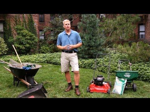 What Are Cool Season Grasses? | Lawn & Garden Care