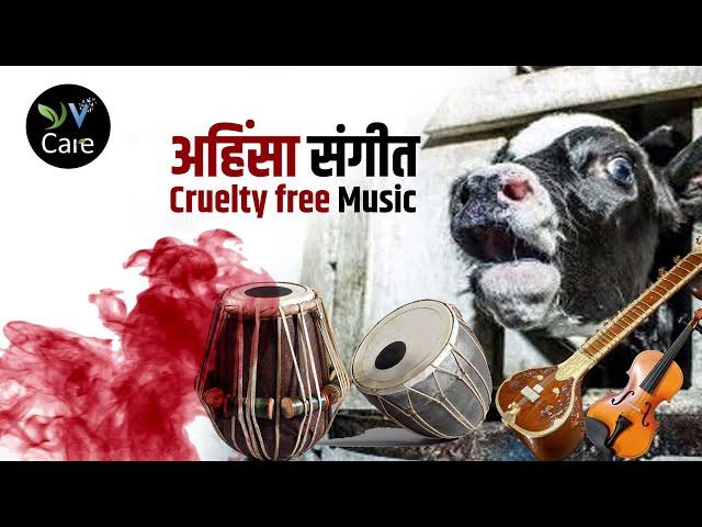 अहिंसा संगीत Cruelty free Music #Shorts