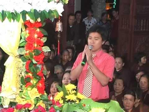 MPEG1 VCD PAL Dang Hoa chu
