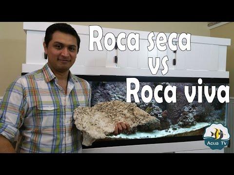 Acuario Marino - Roca Seca o muerta y Roca viva