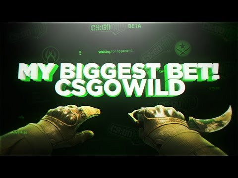 MY BIGGEST BET EVER ON CSGOWILD.COM ( Old Version )