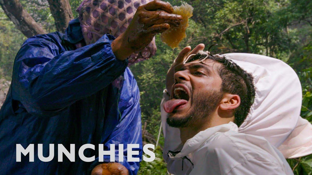 Nepalese Honey Makes You Hallucinate