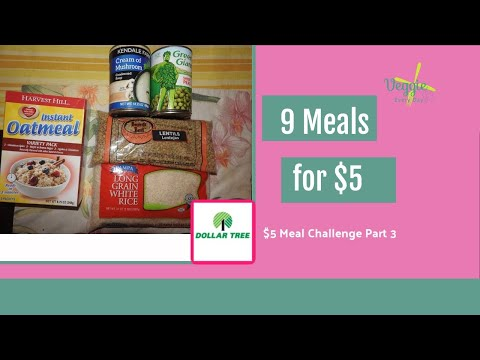 $5 Meal Challenge #4 - Vegan Meals On A Budget: Dollar Tree